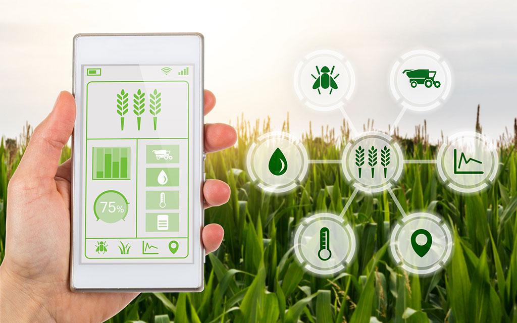 Alimentare, l'innovazione tecnologica parte dai materiali